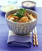 Stew with chicken, noodles and coriander