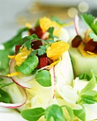 Endive and corn salad with beetroot and oranges