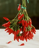 Hanging bouquet with red chili peppers