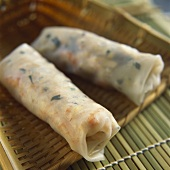 Two spring rolls (rice paper filled with vegetables, Asia)