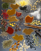 Spice still life on sheet of glass