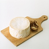 Chaource (soft cheese from Champagne, France)