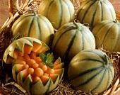 Charentais Melonen (bot: Cucumis melo var. cantalupensis)