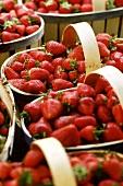 Freshly picked strawberries in basket (Provence, France)