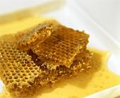Honigwaben mit frischem Bienenhonig