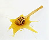 Honey dipper in a pool of honey