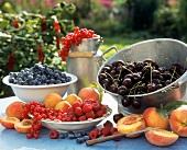 Summer fruits on a garden table