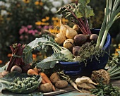 Various vegetables for soups an stews