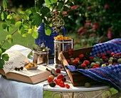 Berries, flowers and book on garden table
