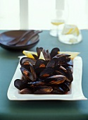 Fresh Blue Mussels