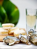 Oysters with ginger dressing