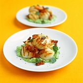 Scallops with diced bacon on savoy