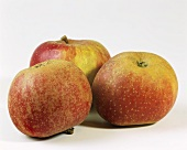 Three Boskop apples