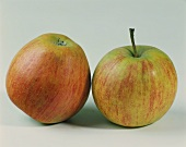 Two Rubinette apples