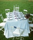 Festive table in meadow