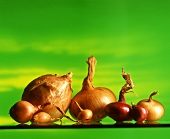 Various types of onions against green background