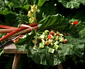 Rhubarb, cut into pieces on a rhubarb leaf