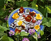 Flower snacks: soft cheese sandwiches with edible flowers