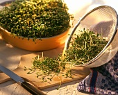 Garden cress in sieve, on wooden board and in a bowl