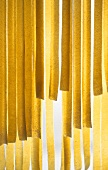Fresh ribbon pasta, back-lit