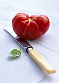 Beefsteak tomato, knife, basil