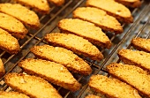 Freshly baked cantuccini on oven rack