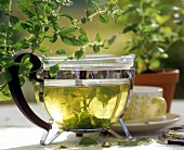 Glass pot of lemon balm tea; sprigs of fresh lemon balm