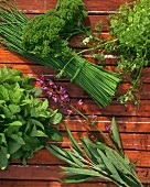 Various herbs on wooden beam