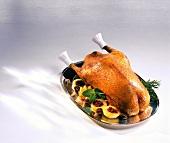 Roast goose on silver platter