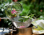 Straining summery herb tea with fresh herbs