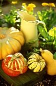 Several pumpkins in open air