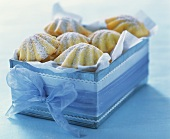 Madeleines in a box (small French cakes)