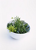 Samphire in white bowl