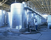 Wine tanks & filtering plant, Santa Rita, Maipo Valley, Chile