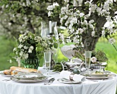 Laid table with spaghetti under apple tree