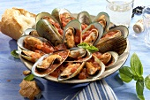 Green mussels with tomato sauce and basil