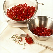 Redcurrants stripped from their stalks with a fork