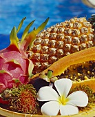 Exotic fruits: lychees, red pitahaya, papaya, pineapple
