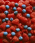 Raspberries and blueberries (filling the picture)