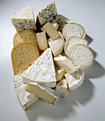 Cheese still life (pieces of various types)