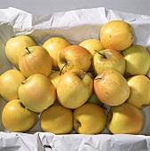 'Golden delicious' apples