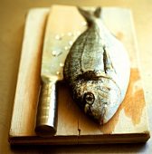 Gilthead bream on a wooden board with cleaver