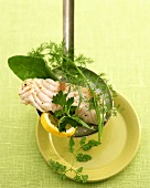 Steamed fish fillet on slotted spoon with herbs