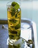 Mint cooler with ice cubes