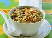Chinese noodle soup with chicken & vegetables for children