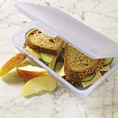 Child's lunchbox with sandwiches and fruit