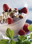 Muesli with quark cream, raspberries and raisins