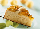 Piece of apricot cake with pistachios
