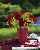Velvety red gerberas in red vase