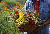 Woman with basket full of flowers and grasses